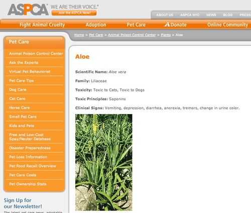 Aspca poisonous plants