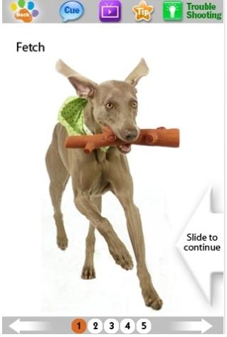 Dog-trick-app