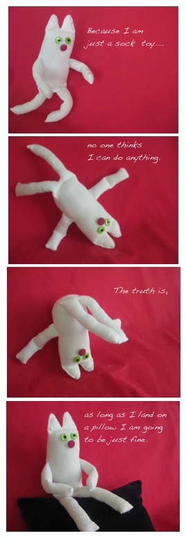Sock toy 3