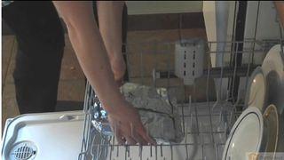 Dishwasher lasagna