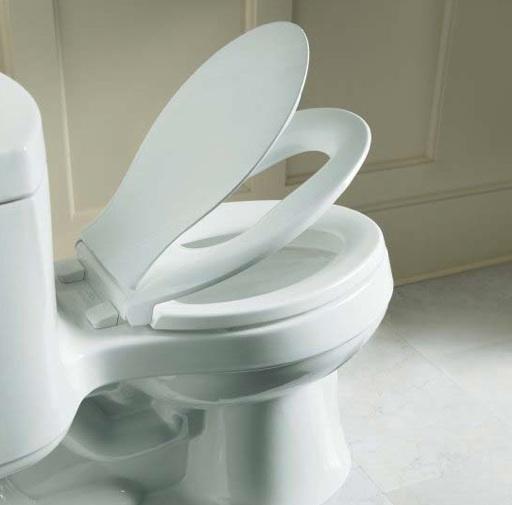 Convertible potty training toilet seat (Kohler)