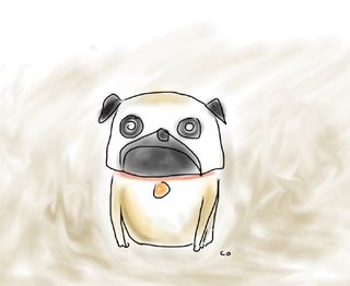 Pug doodle by Chris Olson