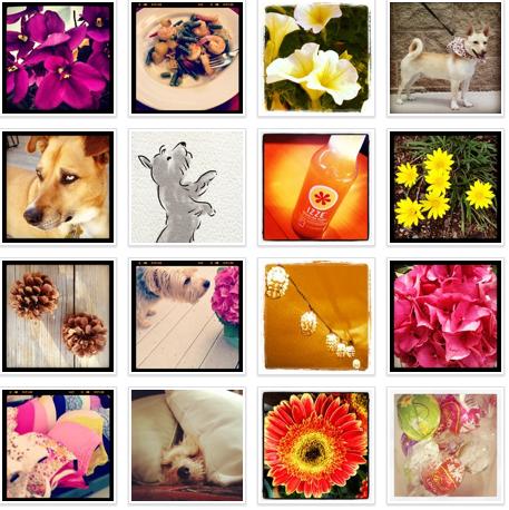 Instagram, momathonblog