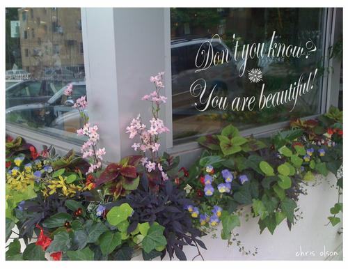 """You are beautiful"" photo"