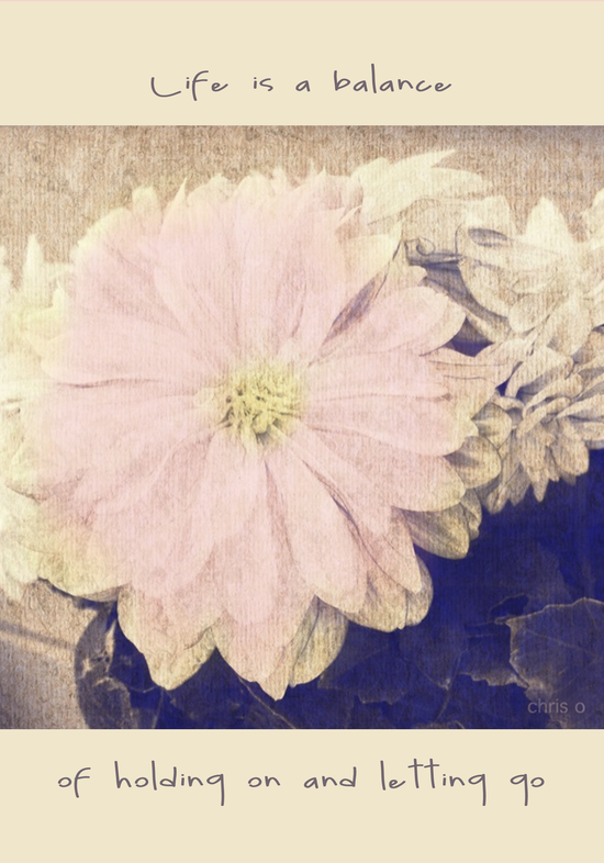 Hand tinted photo of a flower