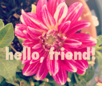 Hello, Friend!