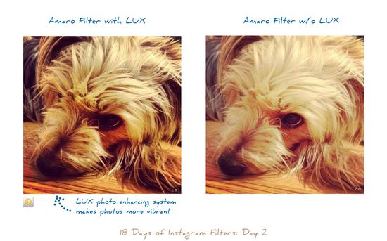 18 Days of Instagram Filters: Day 2, Amaro