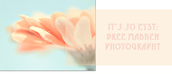 It's so Etsy: Maddenphotography