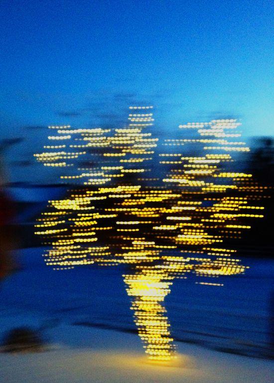 Tree_Motion_Blur