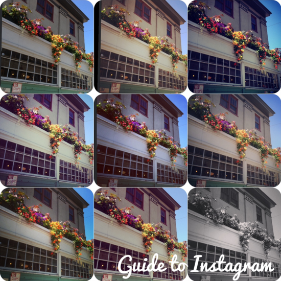 Guide_to_Instagram