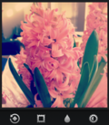 Instagram_Guide