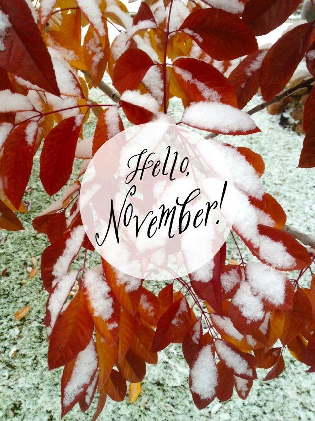 Hello-november
