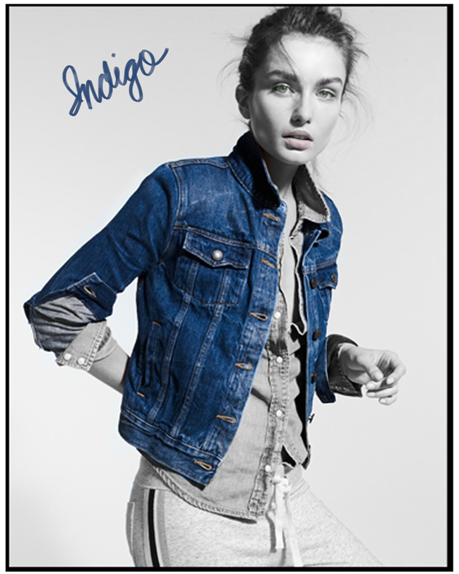 Jcrew-vintage-denim-indigo